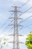 High voltage power pole and electricity line with blue sky backg Royalty Free Stock Photography