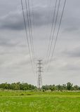 High voltage pylon over the paddy land. Royalty Free Stock Photography