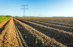 High voltage pylons in an agricultural landscape in the Netherla Royalty Free Stock Photo