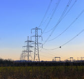 High Voltage Pylons Royalty Free Stock Photography