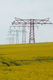 High voltage pylons in a field. High voltage pylons in a yellow flowering field royalty free stock photo