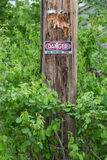 High voltage sign on post. Warning sign High Voltage pole surrounded foliage Royalty Free Stock Photo