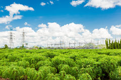 High Voltage Substation in the sky Stock Image