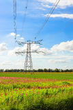 High voltages lines and a power pylon in a rural area Royalty Free Stock Photo