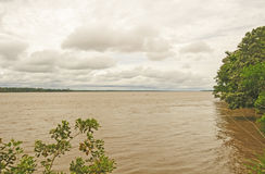 High Water on the Amazon Stock Images