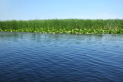High water on a channel in Danube delta Stock Photo