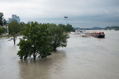 High water on the Danube river in Slovakia Stock Images