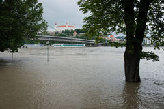 High water on the Danube river in Slovakia Stock Photography