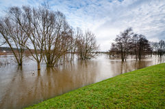 High water flood at elbe dike Stock Image