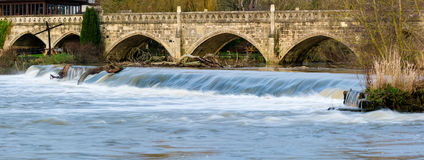 High water flow over Weir near Bath on the River Avon, carrying trees with it Royalty Free Stock Images