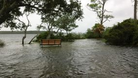 High water level during tropical storm. Stock Photography