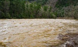 Maury River at Flood Stage in Goshen Pass. High water at the Maury River in Goshen Pass located in the Rockbridge County, Virginia, USA Royalty Free Stock Images