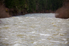 High Water Rapids River Royalty Free Stock Image