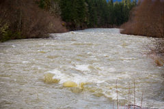 High Water Rapids River Royalty Free Stock Photography