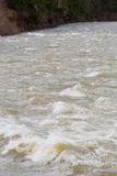 High Water Rapids River Stock Photos