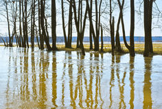 High water in spring Royalty Free Stock Images