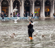 High water in Venice, Italy. Royalty Free Stock Image