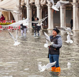 High water in Venice, Italy. Royalty Free Stock Images