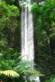 High waterfall Royalty Free Stock Image
