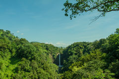 High waterfall in the middle of green forest Stock Image