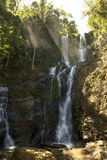 High waterfall in the rainforest on the island of Mindoro in Phi Royalty Free Stock Images