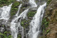 High waterfall in the rainforest on the island of Mindoro in Phi Royalty Free Stock Photo