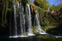 A high waterfall with several streams falls from a green hill surrounded by hanging plants, vines and greenery stock photos