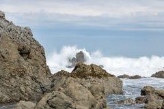 High Waves, Turakirae Reserve, Wainuiomata Coast. High waves and rough seas coming into the Turakirae seal colony area Royalty Free Stock Photo