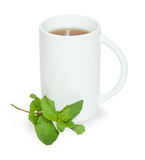 High white cup of tea with sprig of mint Royalty Free Stock Images