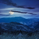 High wild plants at the mountain top at night Stock Photos