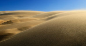 High wind in desert. With lots of sand in the air stock photo