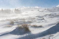 Snow and strong winds cause blizzard conditions on mountains. High winds blowing snow across Vitosha national park Bulgaria , blizzard conditions in the mountain Royalty Free Stock Image