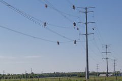 High Wire Line Workers Stock Images