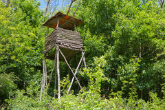 High wooden hunter stand among trees in a forest Stock Images
