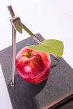 Higher school time. Red apple with compass on a books, on a white background stock photos