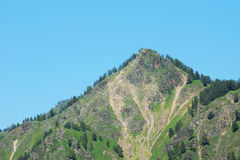 Highest forested peak in a sunny day Stock Images