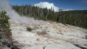 The highest geyser in Yellowstone National Park, Utah, USA stock video footage