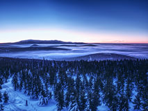 Highest hills above inverse mist. Winter cold weather in mountains. Colorful fog. Misty valley in winter mountains. Peaks of mountains above creamy mist royalty free stock photography