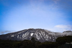 Highest mountain in Africa Kilimanjaro top. Kilimanjaro top view,Highest mountain in Africa Royalty Free Stock Photography