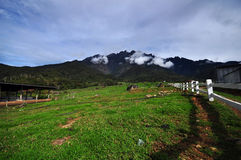 Highest mountain in southeast Asia, Mount kinabalu Stock Photography