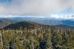 Highest point of the Great Smokey Mountains. Clingmans Dome stock images