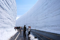 Highest snow walls in Tateyama Kurobe alpine route Royalty Free Stock Image
