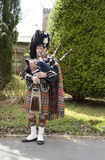 Highland bagpiper in full regalia. This Highland bagpipe player wears all the traditional garb including spats, sporran, epaulettes, bearskin hat, ostrich plume stock photo