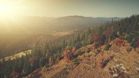 Highland deforestation soft sun beam aerial view