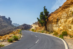 Highland highway in Tenerife, Spain Stock Images