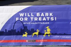 Purina Pet Parade 2020 XII