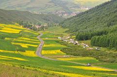 Highland Resort. This Highland Resort in Qinghai Province, China Royalty Free Stock Photography