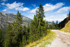 Highland road through  forest mountains Stock Photo