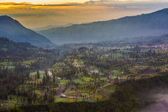 Highland village in Bromo Tengger Semeru National Park, East Jav Stock Image