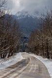 highlands Сельская дорога в снежном, зиме и туманном дне стоковые фотографии rf
